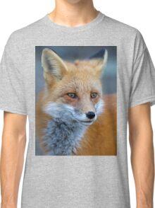 Red Fox - Algonquin Park, Canada Classic T-Shirt