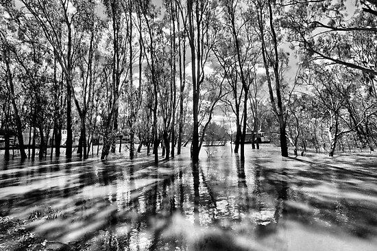 He who has crossed the flood knows how deep it truly is... by Paul Louis Villani