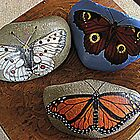 Butterfly stones by Kaye Bel -Cher
