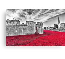 Poppies at The Tower Of London Canvas Print