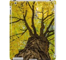 Under the Yellow Canopy iPad Case/Skin