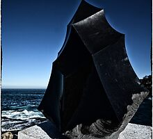 Sculpture by the Sea / 2014 by andreisky