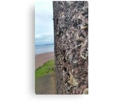Wall of Rocks with Beach Background Metal Print