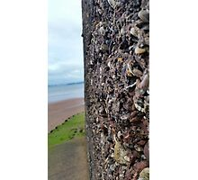 Wall of Rocks with Beach Background Photographic Print