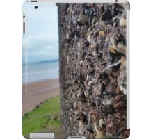 Wall of Rocks with Beach Background iPad Case/Skin