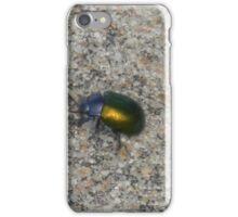 Dogbane Leaf Beetle, Probably.... iPhone Case/Skin