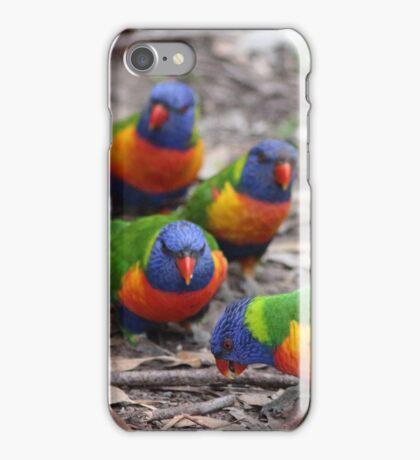 Lorikeets Angry Birds iPhone Case/Skin