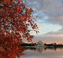 Jefferson Memorial Washington DC by dyoung850