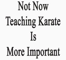 Not Now Teaching Karate Is More Important  by supernova23