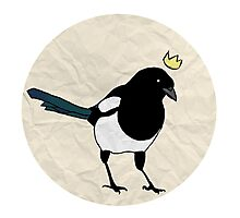 King Magpie [Tee] Photographic Print