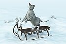 Cat on a sledding by Roberta Angiolani