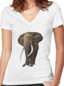 African elephant on isolated background. Women's Fitted V-Neck T-Shirt