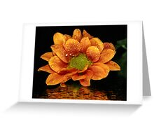 Mustard Chrysanthemum Greeting Card