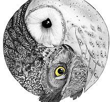 Owls Yin Yang by brian25