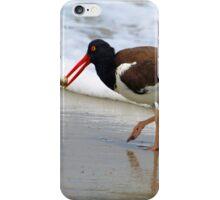 Assateague Island Oyster Catcher iPhone Case/Skin