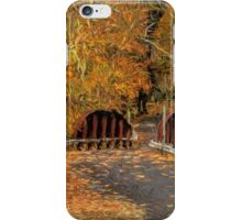 Down The Path of Color iPhone Case/Skin