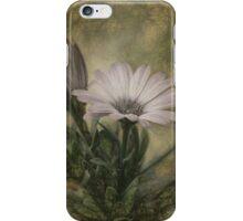 Vintage Daisy iPhone Case/Skin