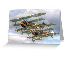Two Little Fokkers - HDR - Dunsfold 2014 Greeting Card