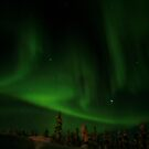 Northern Lights Part 1 by David McGilchrist