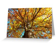 The Autumn Tree Greeting Card