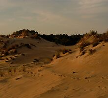 Dunes by Tgarncarz