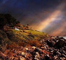 White Adirondacks by Lois  Bryan