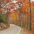 Scenic drive by ANNABEL   S. ALENTON