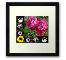 Floral Collage featuring Two Pink Roses Framed Print