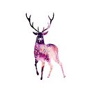 Oh, Deer! by shutterjunkie