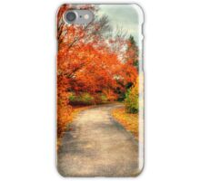 Fall Along Lake Nevin iPhone Case/Skin