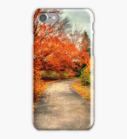 Fall Along Lake Nevin iPhone Case/Skin