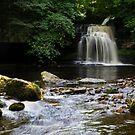 Cauldron Falls by shutterjunkie