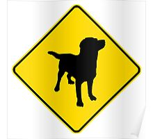 Labrador Retriever Crossing Poster