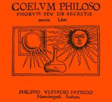Coelum Philosphorum - Medieval Alchemy by Pixelchicken