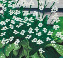 Flowering horseradish plant Sticker