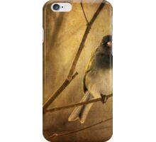 Backlit Birdie Being Buffeted iPhone Case/Skin