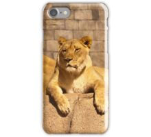 Female African Lions iPhone Case/Skin
