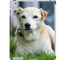 """Hudson""  Lab Rescue Senior iPad Case/Skin"