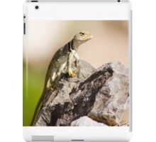 Southwest Desert Lizard iPad Case/Skin