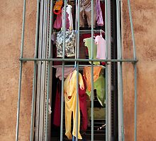 Drying Behind Bars by Peter Baglia