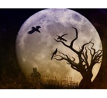 Night Trio Photographic Print