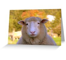 I Have My Winter Coat All Sorted... - Sheep - NZ Greeting Card