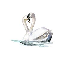 Romantic swan painting by Zendrawing