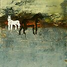 2 Horses in a dream field by donnamalone