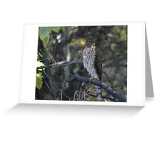 Do you see what I see? Greeting Card
