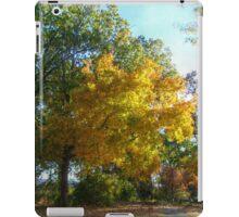 Brilliant Colors in Kingsland Pointe Park, Sleepy Hollow NY iPad Case/Skin
