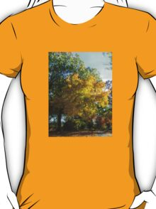 Brilliant Colors in Kingsland Pointe Park, Sleepy Hollow NY T-Shirt