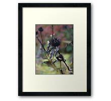 Time to rest, see ya next year. Framed Print