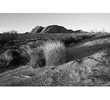 Kata-tjuta Dune Photographic Print