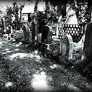 Old Jewish Cemetery - Dornum by Franz Roth